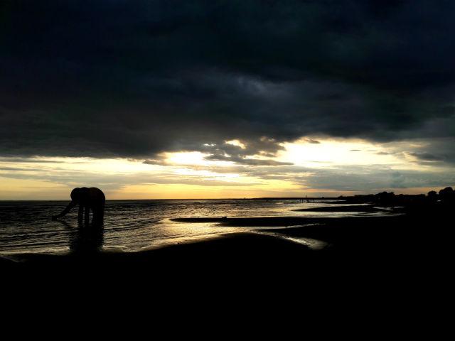 Pärnu strand